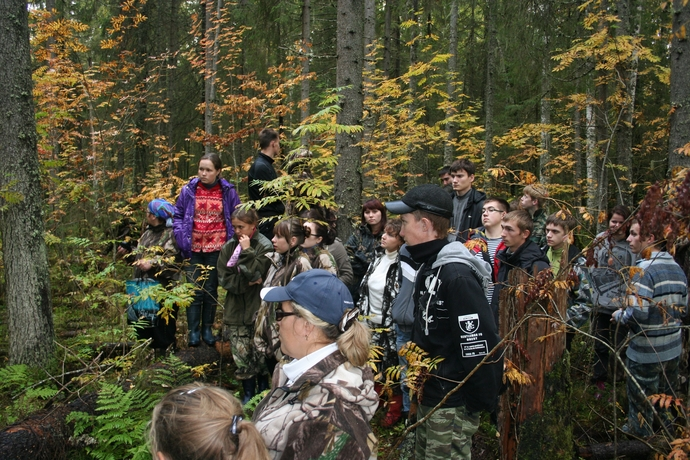 """A story about a spruce forest non-fire (gap) dynamics on the """"Spruce refugium"""" point."""