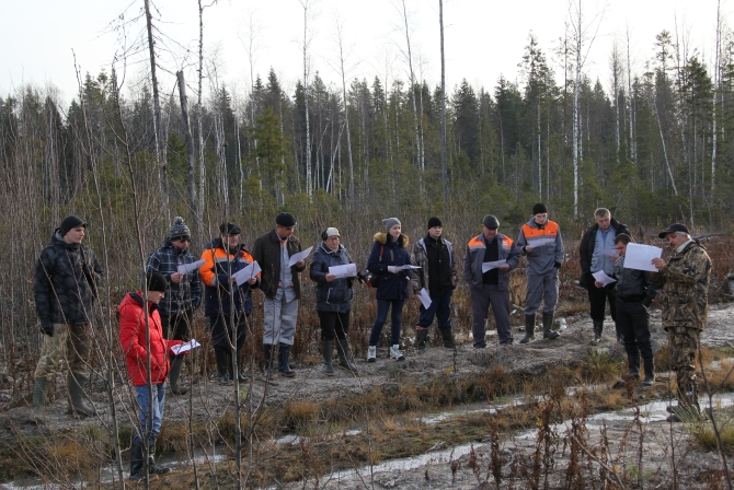 """The leaders of the forest harvesting operations performed for OJSC """"Mondi Syktyvkar"""" are getting familiar with the characteristics of another """"field object"""" of the seminar"""