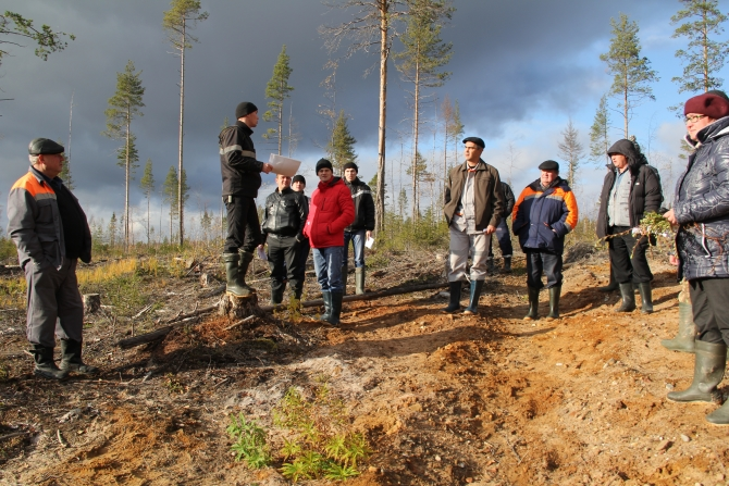 """Silver Taiga Foundation ecologist N.V. Shuktomov: """"We see everything from above, you can be sure of it!!!"""""""