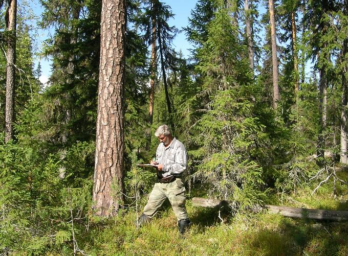 Yu. Pautov in the intact forest landscape research expedition in Udora district, Komi Republic