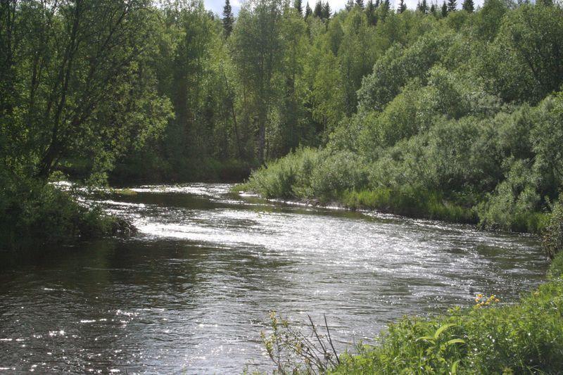 Излучина реки Кула