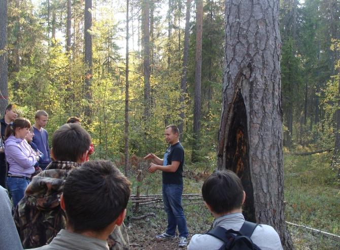 С сосной - старожилом прилузских лесов - знакомятся студенты-первокурсники СЛИ